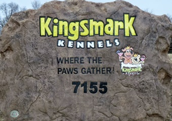 pet friendly boarding and grooming in flagstaff arizona