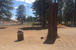 flagstaff dog park
