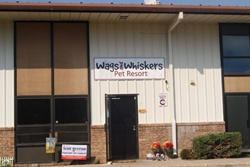 Wags and Whiskers Pet Resort pet care in Flagstaff, AZ